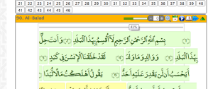 Surah progress indicator